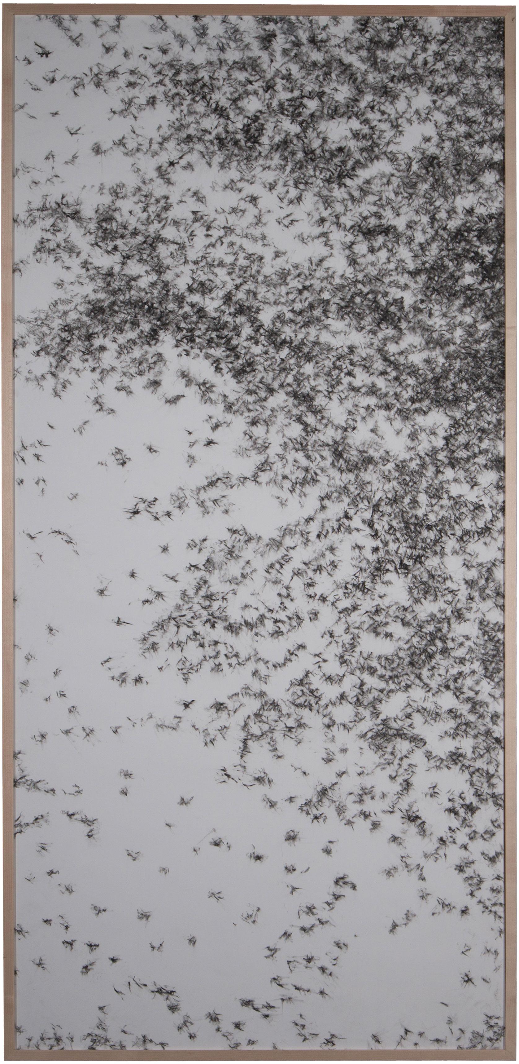 Detalle de 'Piel de árbol, piel de pájaro' Nuria Ferriol