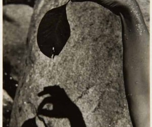 S/T Mano con hoja y sombra. G. Prieto-F. Barraclough